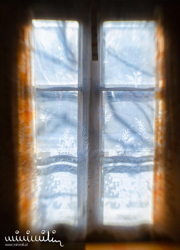 zimowa sesja fotograficzna
